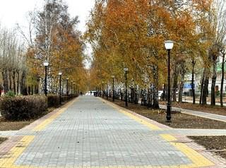 Барнаульцы выбирают парки и скверы для благоустройства в 2020 году