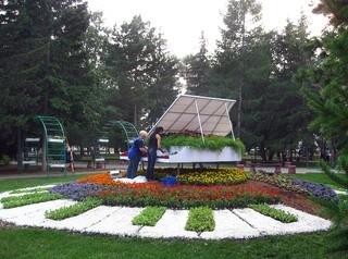 В этом году Омск озеленят по-новому