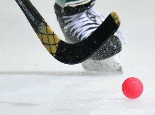 За новый Центр по хоккею с мячом в Иркутске возьмётся застройщик из Кемерово