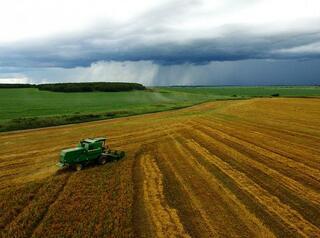 «Дальневосточный гектар» можно получить в Бурятии и Забайкальском крае