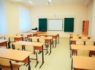 Школу в Академгородке все-таки предлагают построить на месте березовой рощи