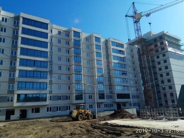 Ход строительства 3 октября 2019