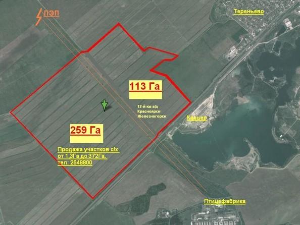 Продам  земельный участок, 2560 соток, Березовка. Фото 3.