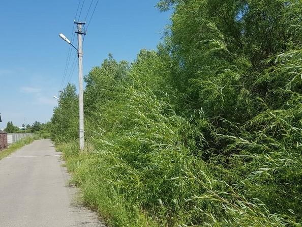 Продам дом, 160 м², Павловск. Фото 5.