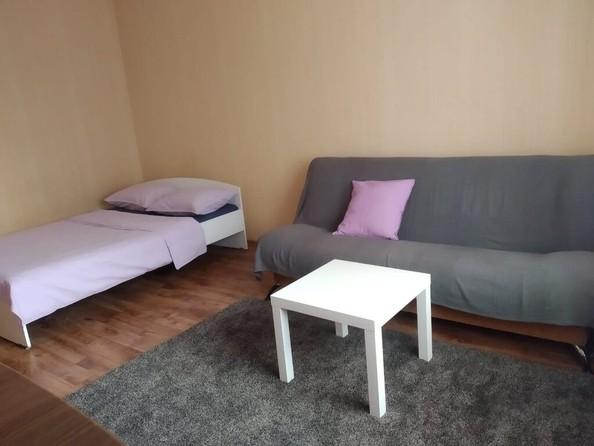 Сдам посуточно в аренду 1-комнатную квартиру, 45 м², Барнаул. Фото 2.