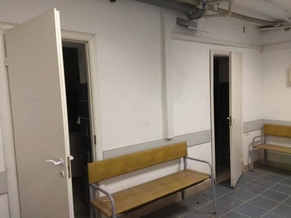 Продам помещение свободного назначения, 265 м², Краевая ул, 257. Фото 2.