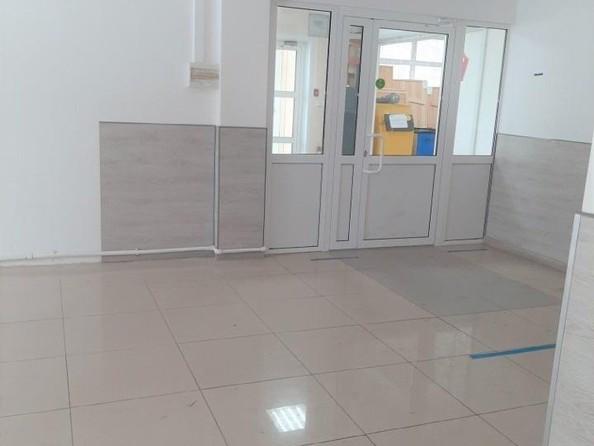 Сдам помещение свободного назначения, 30 м², Эмилии Алексеевой ул, 75А. Фото 2.