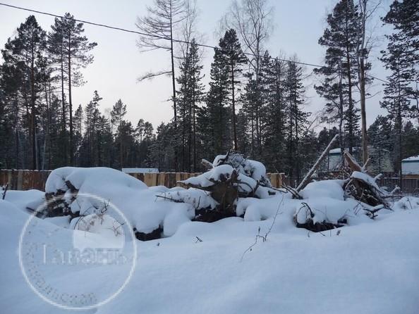 Продам  земельный участок, 600 соток, Горячинск. Фото 4.