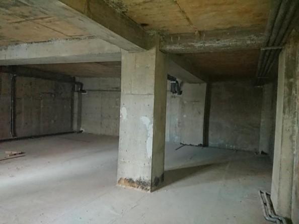 Продам нежилое универсальное помещение, 83.3 м2, Баумана ул, 237/7. Фото 6.