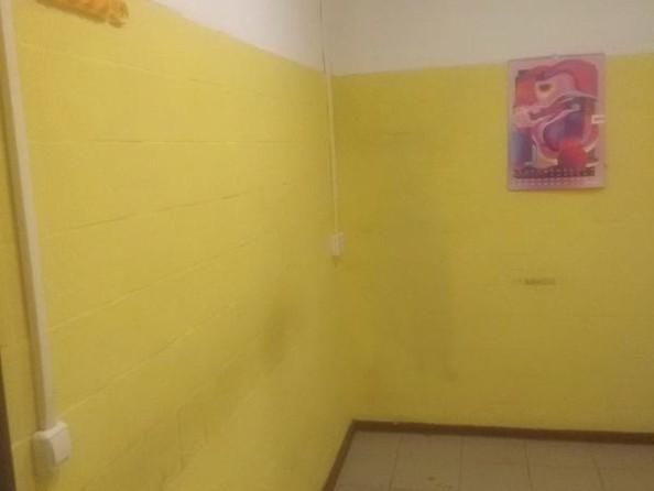 Сдам офис, 83 м2, Академика Образцова ул, 4. Фото 15.