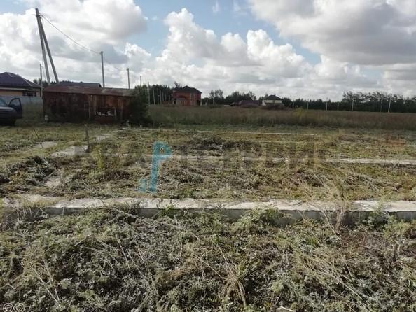 Продам  земельный участок, 1000 соток, Ракитинка (Морозовского с/п). Фото 1.